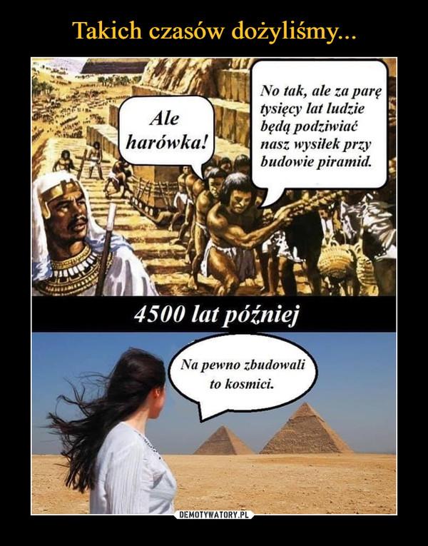 –  Ale harówka! No tak ale za parę tysięcy lat ludzie będą podziwiać nasz wysiłek przy budowie piramid. 4500 lat później Na pewno zbudowali to kosmici