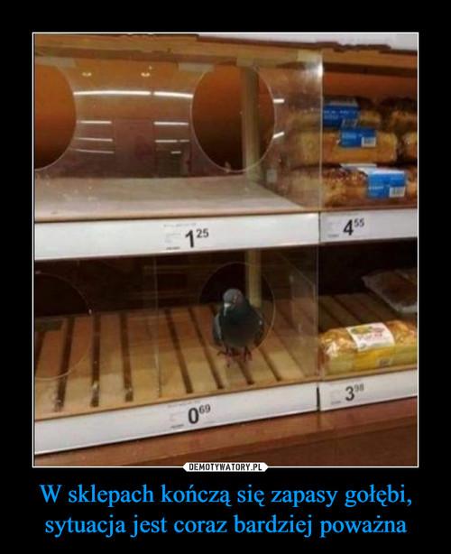 W sklepach kończą się zapasy gołębi, sytuacja jest coraz bardziej poważna