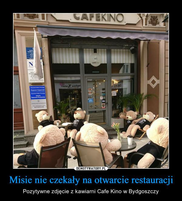 Misie nie czekały na otwarcie restauracji – Pozytywne zdjęcie z kawiarni Cafe Kino w Bydgoszczy