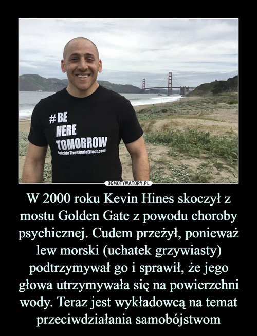 W 2000 roku Kevin Hines skoczył z mostu Golden Gate z powodu choroby psychicznej. Cudem przeżył, ponieważ lew morski (uchatek grzywiasty) podtrzymywał go i sprawił, że jego głowa utrzymywała się na powierzchni wody. Teraz jest wykładowcą na temat przeciwdziałania samobójstwom