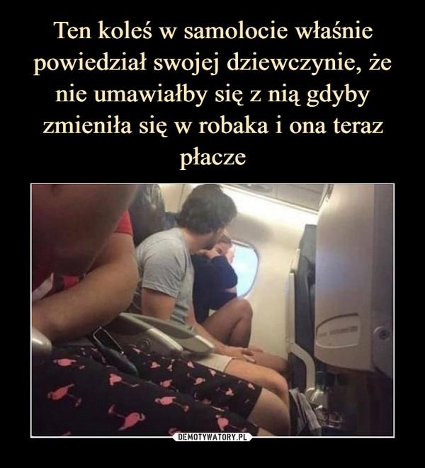 Ten koleś w samolocie właśnie powiedział swojej dziewczynie, że nie umawiałby się z nią gdyby zmieniła się w robaka i ona teraz płacze