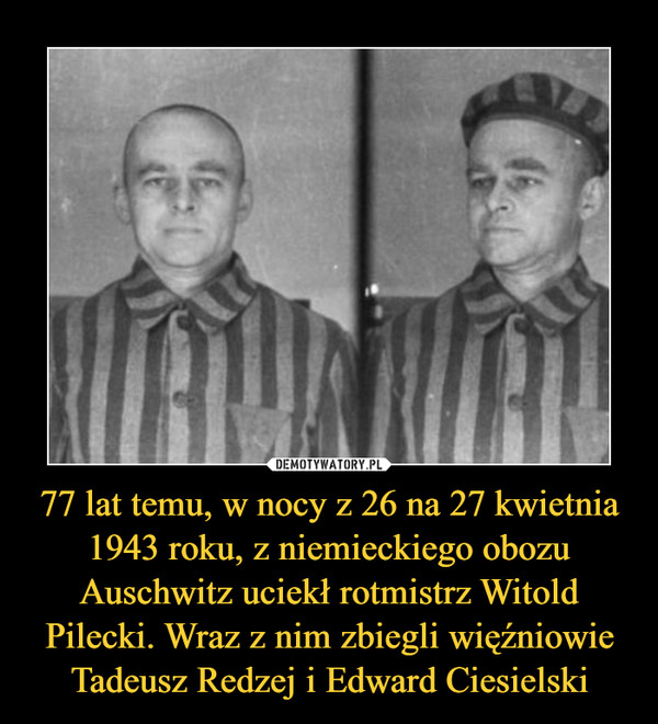 77 lat temu, w nocy z 26 na 27 kwietnia 1943 roku, z niemieckiego obozu Auschwitz uciekł rotmistrz Witold Pilecki. Wraz z nim zbiegli więźniowie Tadeusz Redzej i Edward Ciesielski –
