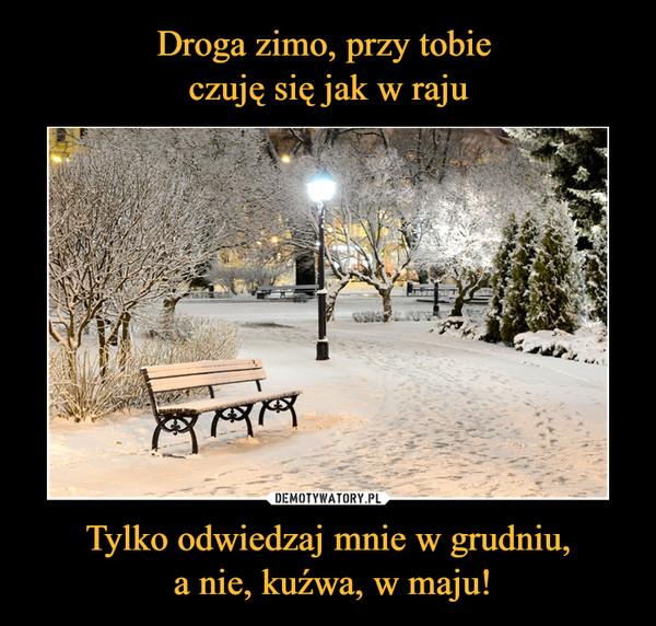 Tylko odwiedzaj mnie w grudniu, a nie, kuźwa, w maju! –