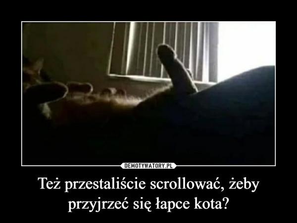 Też przestaliście scrollować, żeby przyjrzeć się łapce kota? –