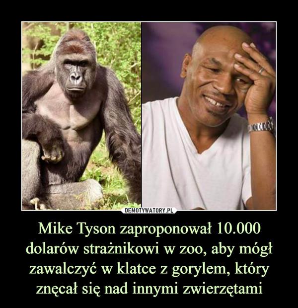 Mike Tyson zaproponował 10.000 dolarów strażnikowi w zoo, aby mógł zawalczyć w klatce z gorylem, który znęcał się nad innymi zwierzętami –