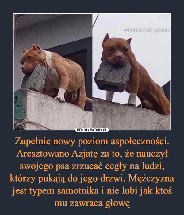 Zupełnie nowy poziom aspołeczności. Aresztowano Azjatę za to, że nauczył swojego psa zrzucać cegły na ludzi, którzy pukają do jego drzwi. Mężczyzna jest typem samotnika i nie lubi jak ktoś mu zawraca głowę –