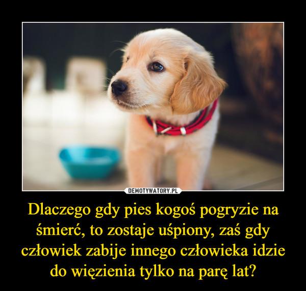 Dlaczego gdy pies kogoś pogryzie na śmierć, to zostaje uśpiony, zaś gdy człowiek zabije innego człowieka idzie do więzienia tylko na parę lat? –
