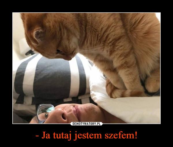 - Ja tutaj jestem szefem! –