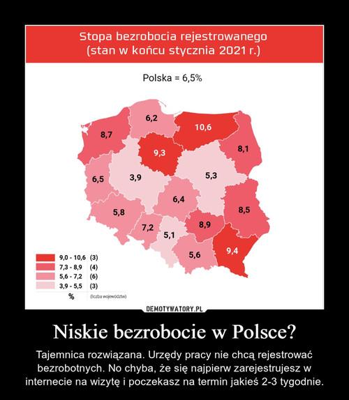 Niskie bezrobocie w Polsce?
