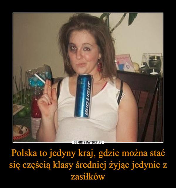 Polska to jedyny kraj, gdzie można stać się częścią klasy średniej żyjąc jedynie z zasiłków –