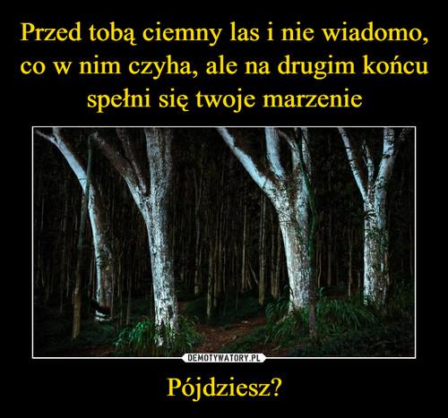 Przed tobą ciemny las i nie wiadomo, co w nim czyha, ale na drugim końcu spełni się twoje marzenie Pójdziesz?