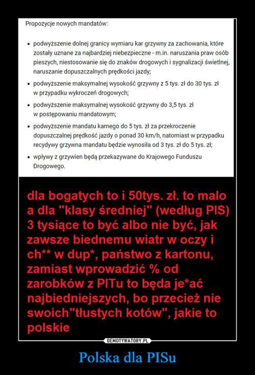 Polska dla PISu