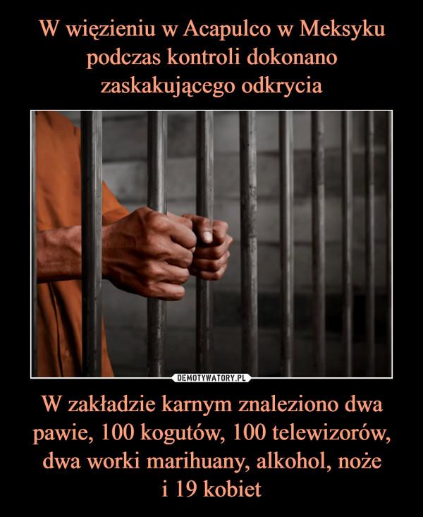 W zakładzie karnym znaleziono dwa pawie, 100 kogutów, 100 telewizorów, dwa worki marihuany, alkohol, nożei 19 kobiet –