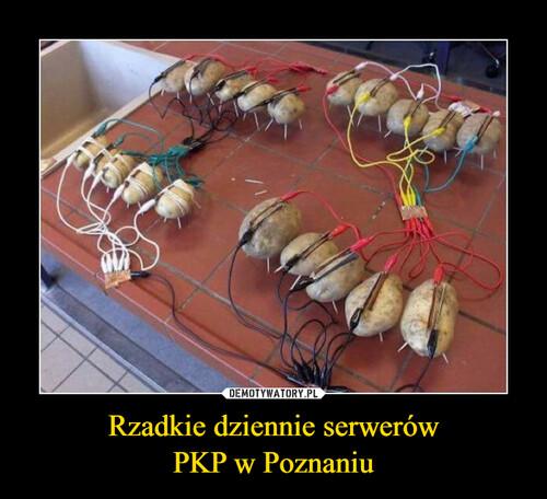Rzadkie dziennie serwerów PKP w Poznaniu