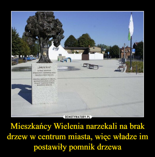 Mieszkańcy Wielenia narzekali na brak drzew w centrum miasta, więc władze im postawiły pomnik drzewa –