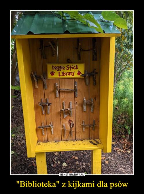 """""""Biblioteka"""" z kijkami dla psów"""