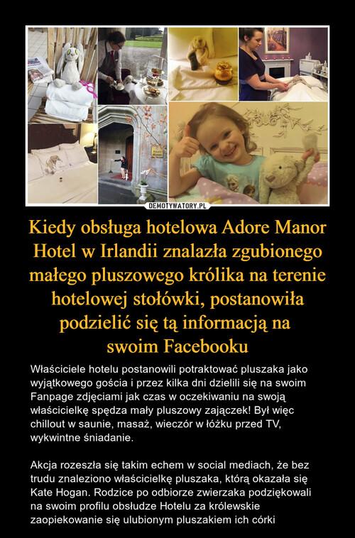 Kiedy obsługa hotelowa Adore Manor Hotel w Irlandii znalazła zgubionego małego pluszowego królika na terenie hotelowej stołówki, postanowiła podzielić się tą informacją na  swoim Facebooku