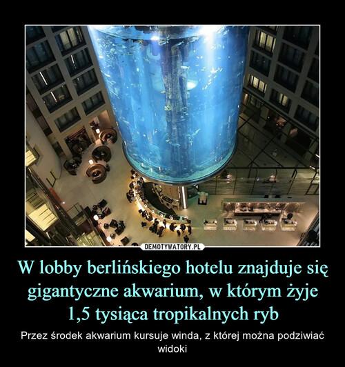 W lobby berlińskiego hotelu znajduje się gigantyczne akwarium, w którym żyje 1,5 tysiąca tropikalnych ryb