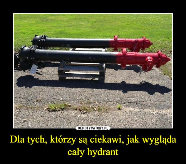 Dla tych, którzy są ciekawi, jak wygląda cały hydrant –