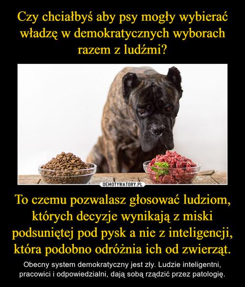 Czy chciałbyś aby psy mogły wybierać władzę w demokratycznych wyborach razem z ludźmi? To czemu pozwalasz głosować ludziom, których decyzje wynikają z miski podsuniętej pod pysk a nie z inteligencji, która podobno odróżnia ich od zwierząt.
