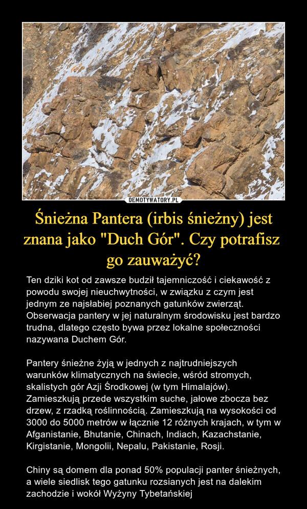 """Śnieżna Pantera (irbis śnieżny) jest znana jako """"Duch Gór"""". Czy potrafisz go zauważyć? – Ten dziki kot od zawsze budził tajemniczość i ciekawość z powodu swojej nieuchwytności, w związku z czym jest jednym ze najsłabiej poznanych gatunków zwierząt. Obserwacja pantery w jej naturalnym środowisku jest bardzo trudna, dlatego często bywa przez lokalne społeczności nazywana Duchem Gór.Pantery śnieżne żyją w jednych z najtrudniejszych warunków klimatycznych na świecie, wśród stromych, skalistych gór Azji Środkowej (w tym Himalajów). Zamieszkują przede wszystkim suche, jałowe zbocza bez drzew, z rzadką roślinnością. Zamieszkują na wysokości od 3000 do 5000 metrów w łącznie 12 różnych krajach, w tym w Afganistanie, Bhutanie, Chinach, Indiach, Kazachstanie, Kirgistanie, Mongolii, Nepalu, Pakistanie, Rosji.Chiny są domem dla ponad 50% populacji panter śnieżnych, a wiele siedlisk tego gatunku rozsianych jest na dalekim zachodzie i wokół Wyżyny Tybetańskiej"""