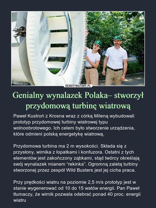 Genialny wynalazek Polaka– stworzył przydomową turbinę wiatrową