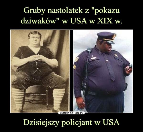 Dzisiejszy policjant w USA –